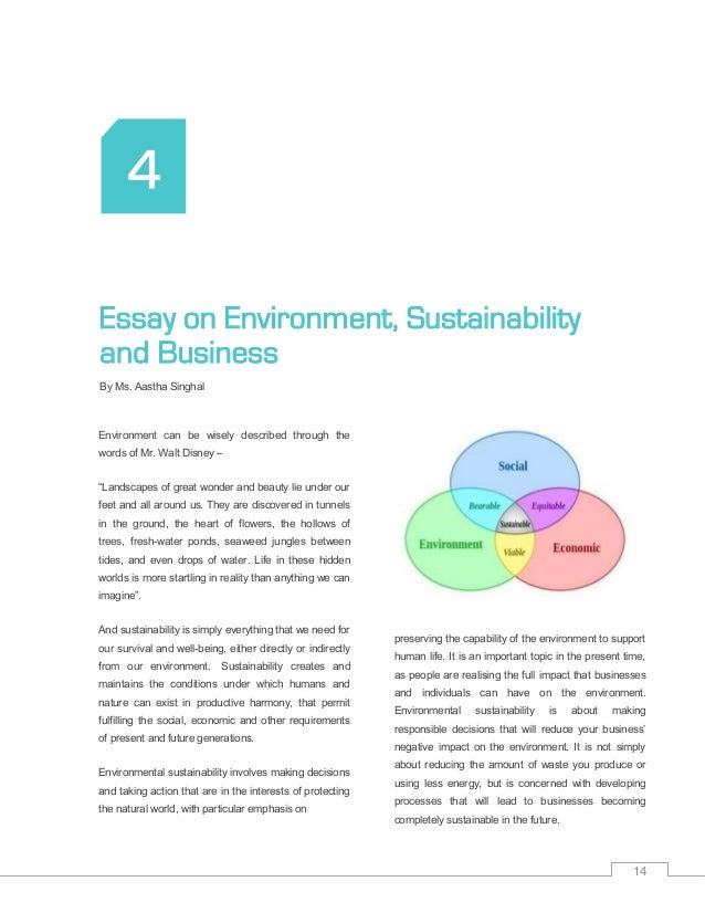 marketing sustainability essay