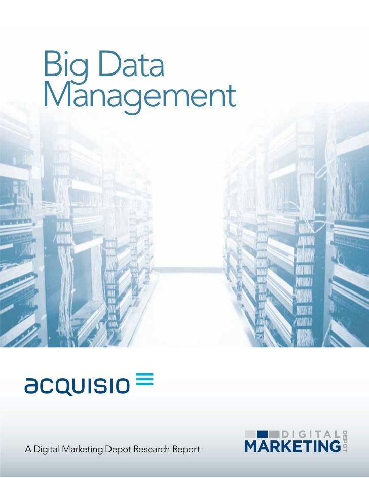 Big Data   ManagementA Digital Marketing Depot Research Report