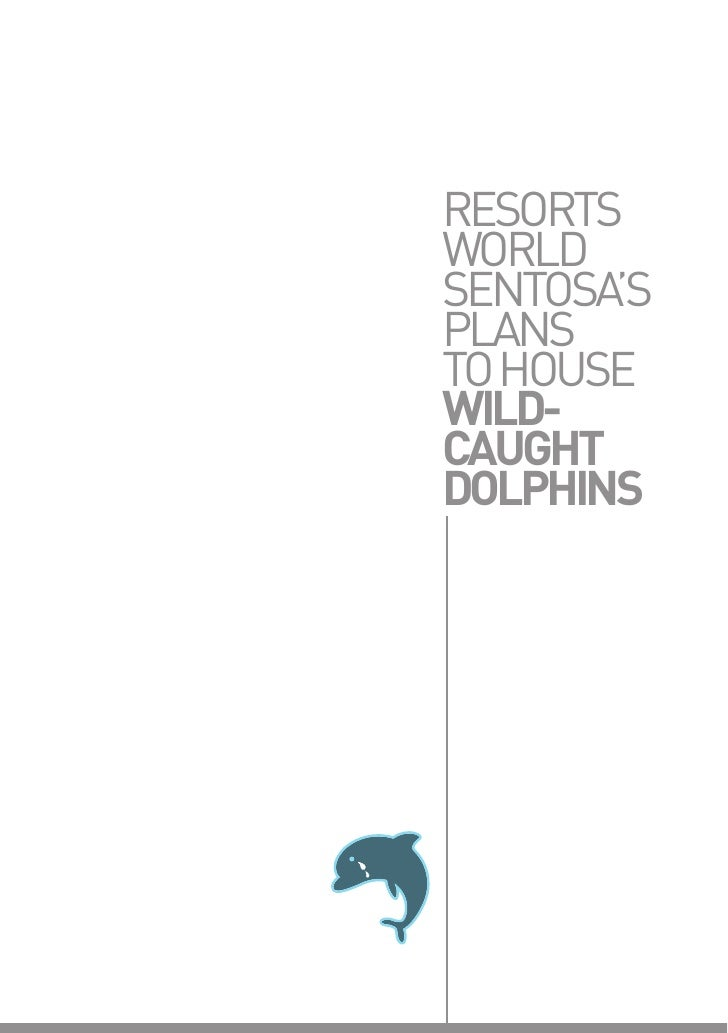 Acres  resorts world's dolphins report