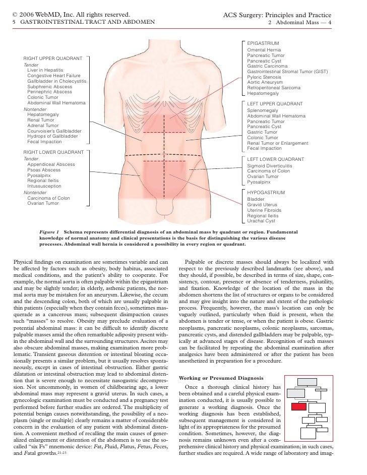 Muscle Fiber Types as well L1 Introduction besides Four Business Models For The Digital Age moreover Abdominal Cavity Anatomy likewise Ecgpedia Ecg Presentation. on left lower quadrant