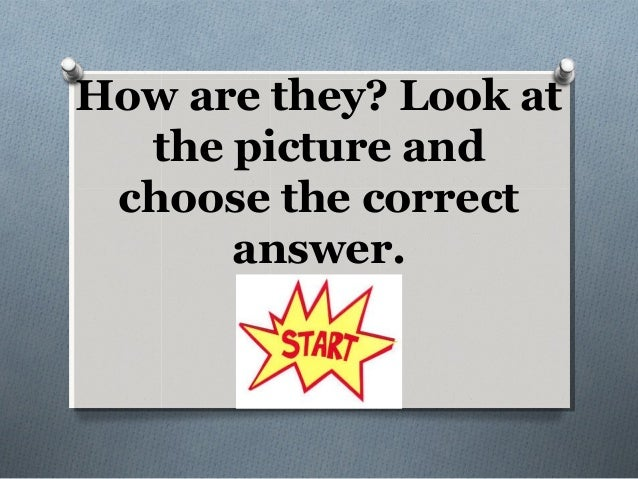 How are they? Look at the picture and choose the correct answer.
