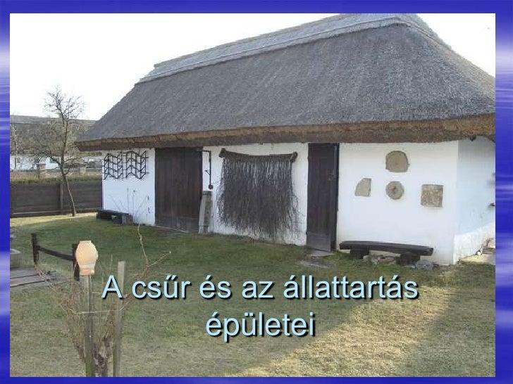 A csűr és az állattartás épületei<br />