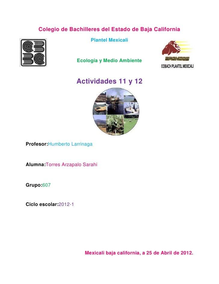 Colegio de Bachilleres del Estado de Baja California                            Plantel Mexicali                       Eco...
