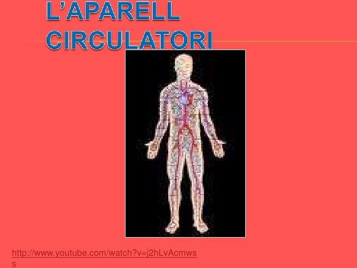 L'APARELL CIRCULATORI<br />http://www.youtube.com/watch?v=j2hLvAcmwss<br />