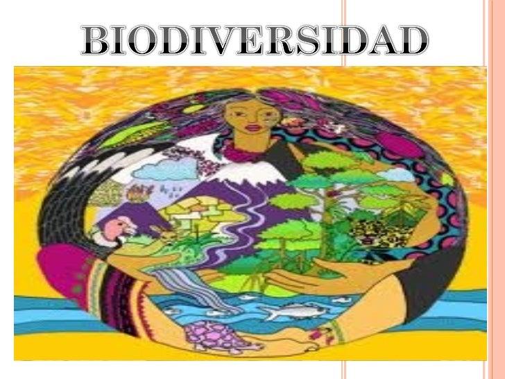 Importancia de la Biodiversidad Act 2 Reconocimiento