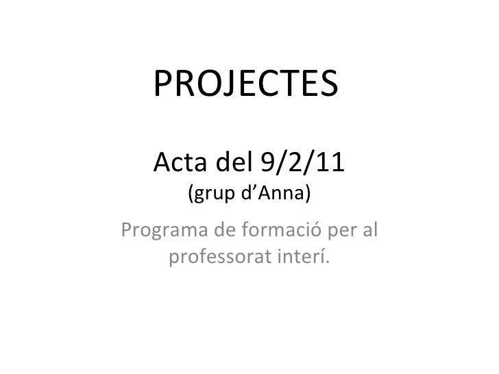PROJECTES   Acta del 9/2/11 (grup d'Anna) Programa de formació per al professorat interí.