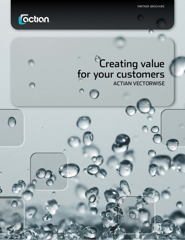 Partner Brochure     Creating valuefor your customers       ACtiAn VeCtorwise