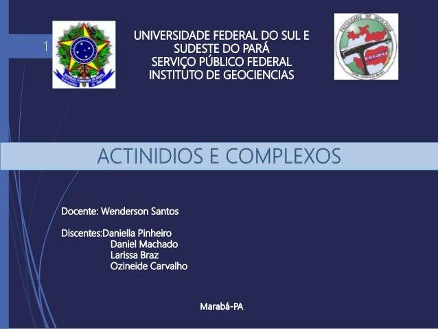 UNIVERSIDADE FEDERAL DO SUL E SUDESTE DO PARÁ SERVIÇO PÚBLICO FEDERAL INSTITUTO DE GEOCIENCIAS Marabá-PA 1 Docente: Wender...