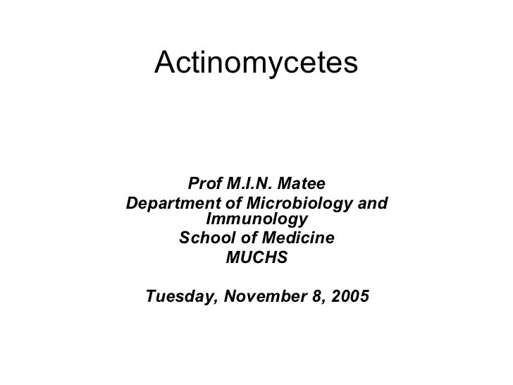 Actinomycetes Prof M.I.N. Matee Department of Microbiology and Immunology School of Medicine MUCHS Tuesday, November 8, 2005
