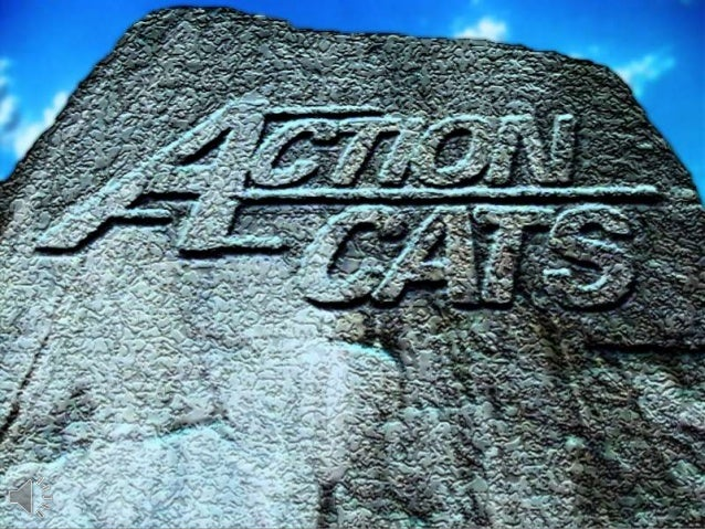 Action cats (v.m.)