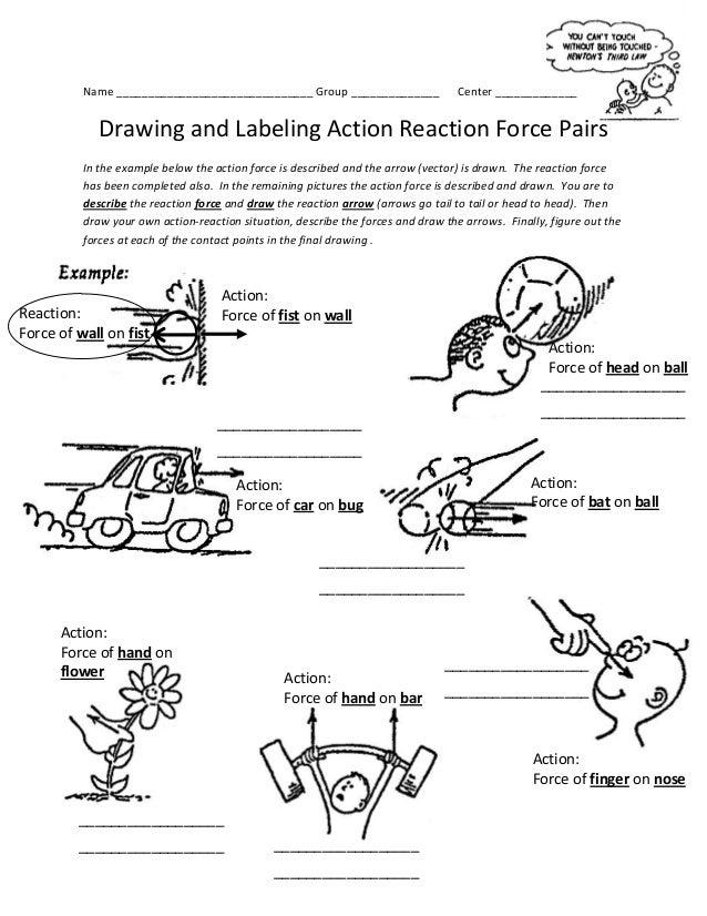 Actionreactionworksheet