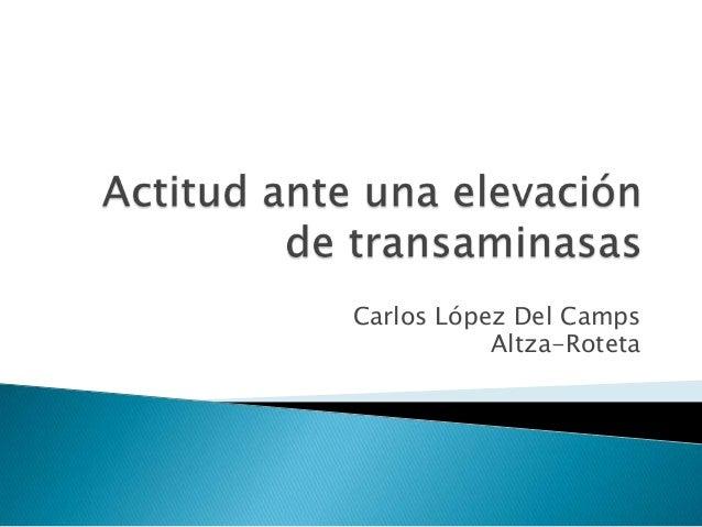 Carlos López Del Camps Altza-Roteta