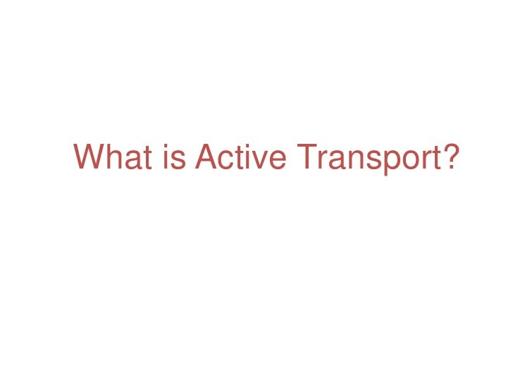 What is Active Transport?<br />