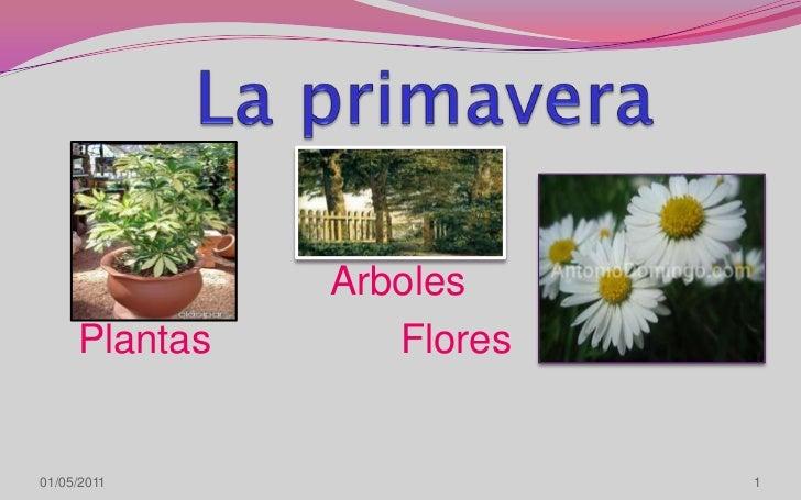 La primavera<br />Arboles<br />     Plantas                 Flores<br />1<br />08/04/2011<br />