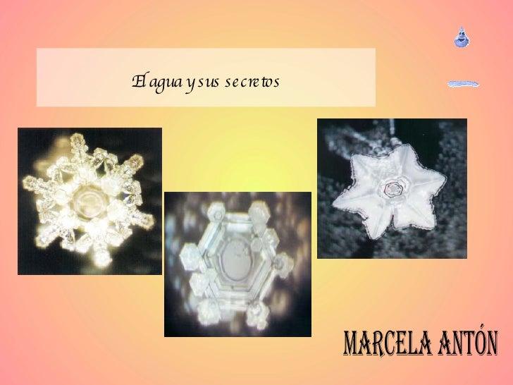 El agua y sus secretos Marcela Antón