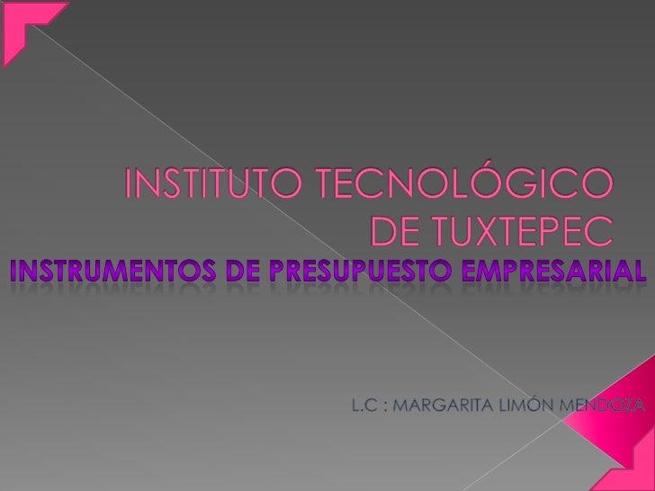 INSTITUTO TECNOLÓGICO DE TUXTEPEC<br />INSTRUMENTOS DE PRESUPUESTO EMPRESARIAL<br />L.C : MARGARITA LIMÓN MENDOZA<br />