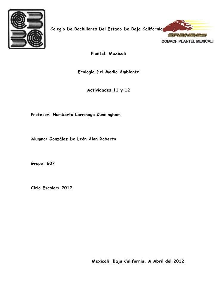 Actividades 11 y 12 ecologia
