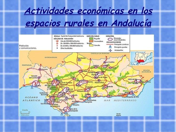 Actividades económicas en los espacios rurales en Andalucía