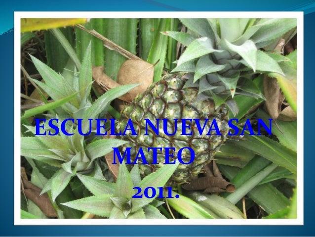 ACTIVIDADES REALIZADAS ESCUELA NUEVA SAN MATEO 2011.