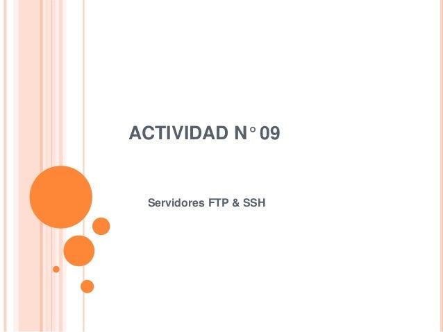 Actividad n° 09