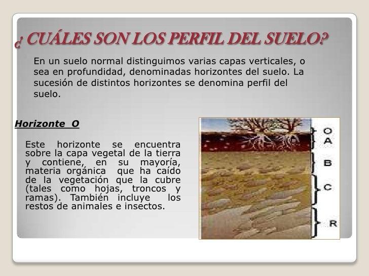 El suelo composicion y formacion for Perfil del suelo wikipedia