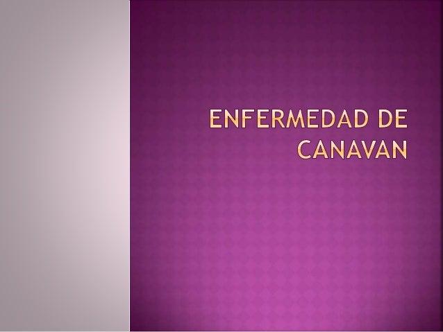  La enfermedad de Canavan (enfermedad de Canavan ) también conocida como degeneración esponjosa del cerebro o deficiencia...