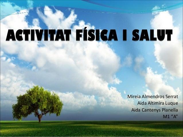 """Mireia Almendros Serrat    Aida Altimira Luque Aida Cantenys Planella                M1 """"A"""""""