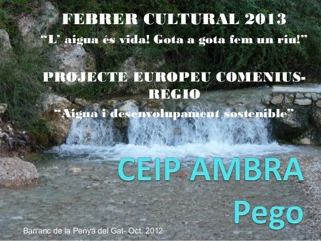 """FEBRER CULTURAL 2013""""L' aigua és vida! Gota a gota fem un riu!""""PROJECTE EUROPEU COMENIUS-REGIO""""Aigua i desenvolupament sos..."""