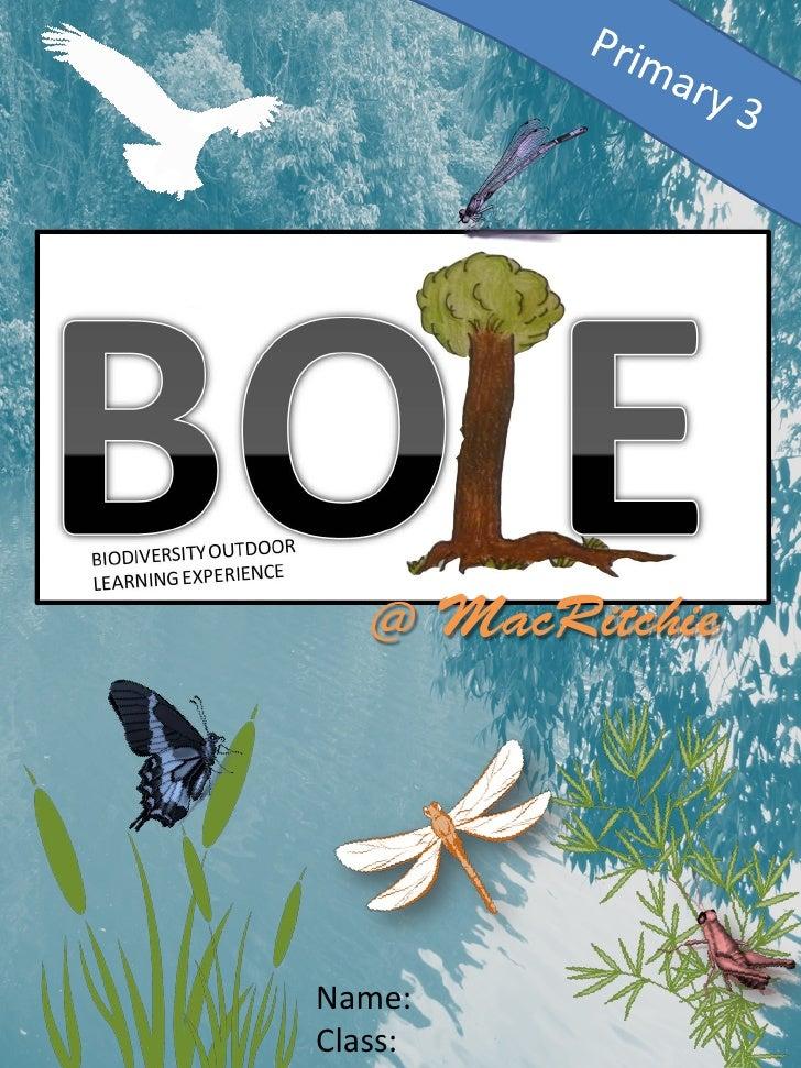 BOLE Activity Booklet