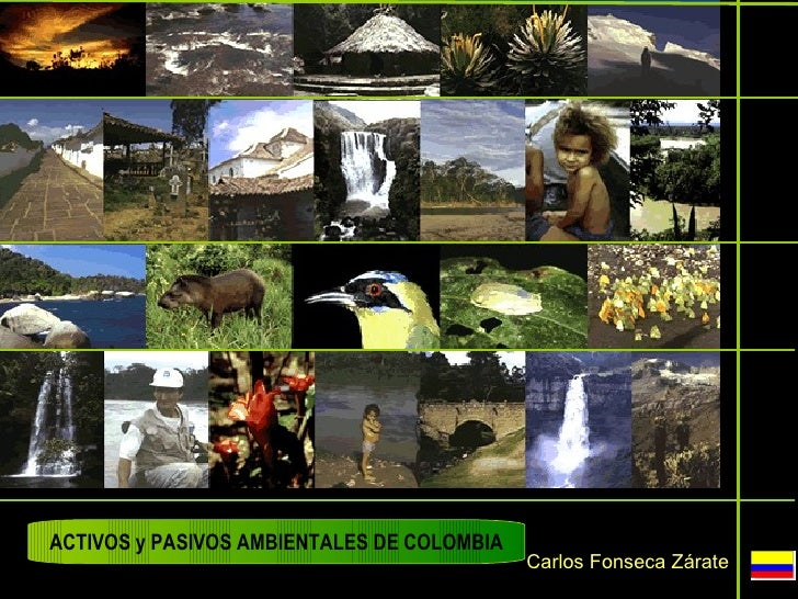 ACTIVOS y PASIVOS AMBIENTALES DE COLOMBIA                                            Carlos Fonseca Zárate