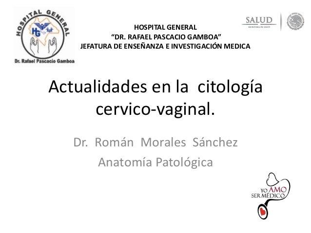 """Actualidades en la citología cervico-vaginal. Dr. Román Morales Sánchez Anatomía Patológica HOSPITAL GENERAL """"DR. RAFAEL P..."""