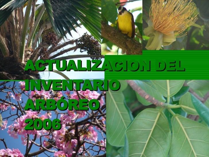ACTUALIZACION DEL INVENTARIO ARBÓREO 2006
