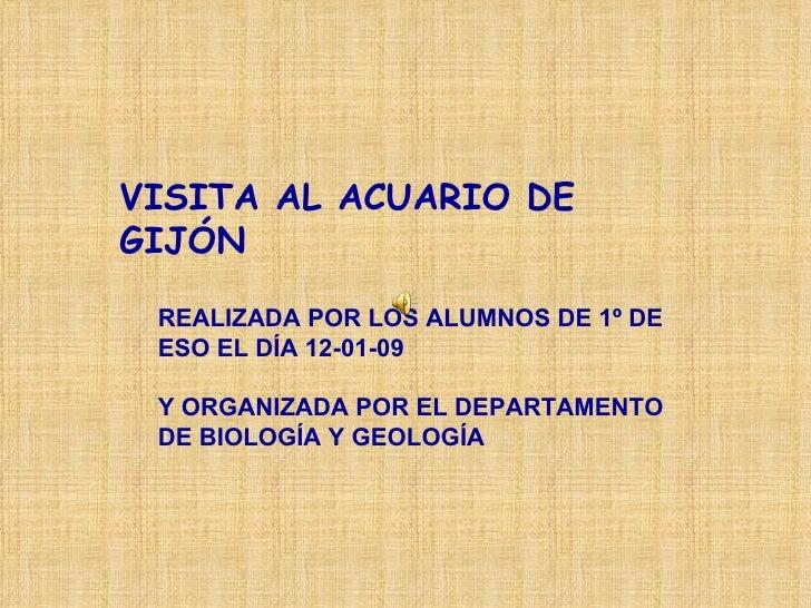 VISITA AL ACUARIO DE GIJÓN   REALIZADA POR LOS ALUMNOS DE 1º DE ESO EL DÍA 12-01-09 Y ORGANIZADA POR EL DEPARTAMENTO DE BI...