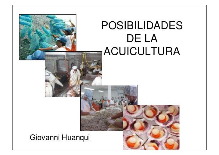 POSIBILIDADES                       DE LA                   ACUICULTURAGiovanni Huanqui
