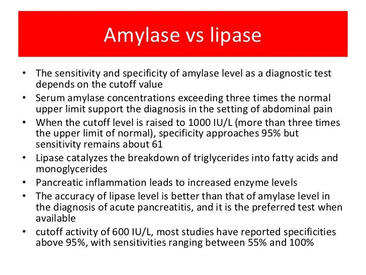 related keywords suggestions for lipase vs amylase