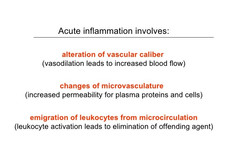 acute inflammation essay As the pocket deepens, the balance is disrupted, and an acute inflammatory response results, forming pus  since many cases of toothache are inflammatory in nature.