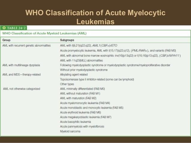 leukemia myeloid acute classification essay