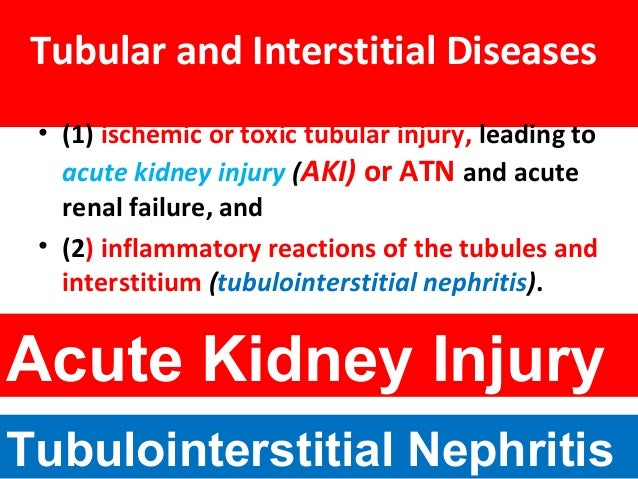 Tubular and Interstitial Diseases • (1) ischemic or toxic tubular injury, leading to acute kidney injury (AKI) or ATN and ...