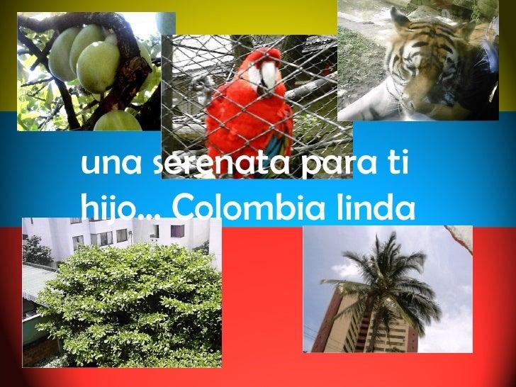una serenata para ti hijo… Colombia linda
