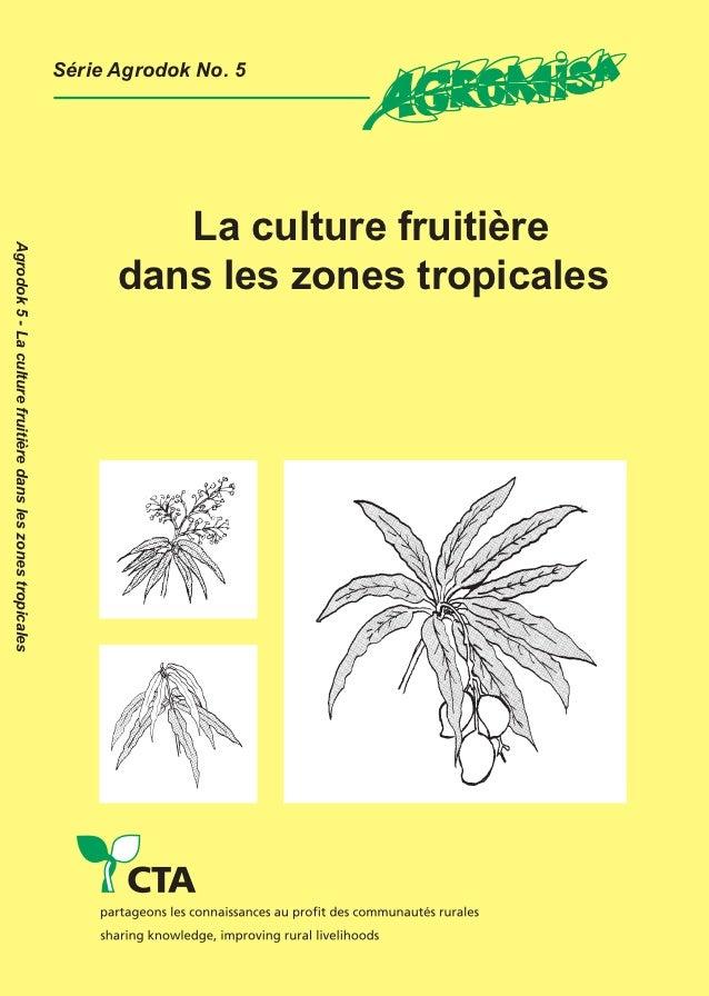 La culture fruitière dans les zones tropicales