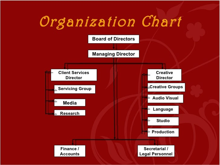 the marketing structure and its function Individuals within the structure the chief executive officer the chief marketing officer 1 company types and structures.