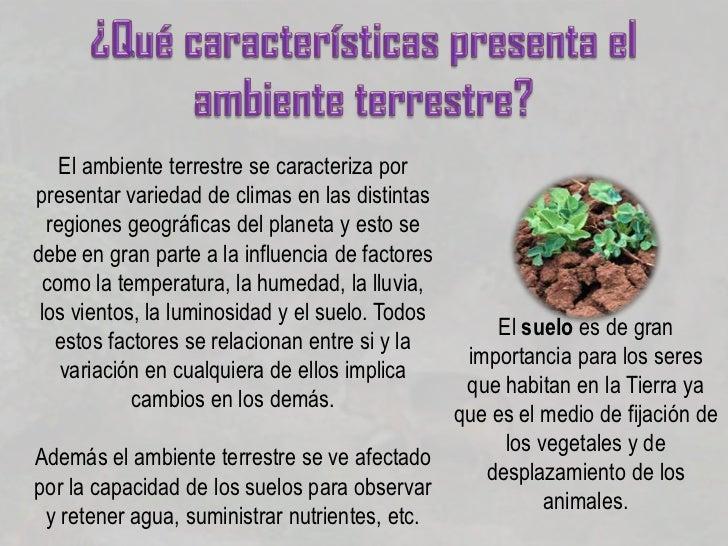 Adaptaci n de los seres vivos for Cuales son las caracteristicas del suelo