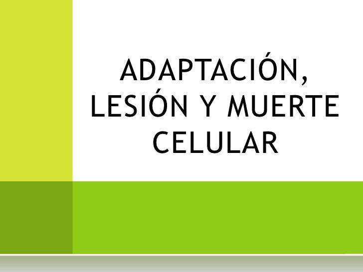 Adaptación, lesion y muerte celular