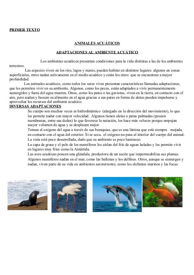 PRIMER TEXTO ANIMALES ACUÁTICOS ADAPTACIONES AL AMBIENTE ACUÁTICO Los ambientes acuáticos presentan condiciones para la vi...