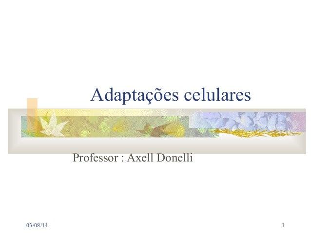 Adaptações celulares Professor : Axell Donelli  03/08/14  1