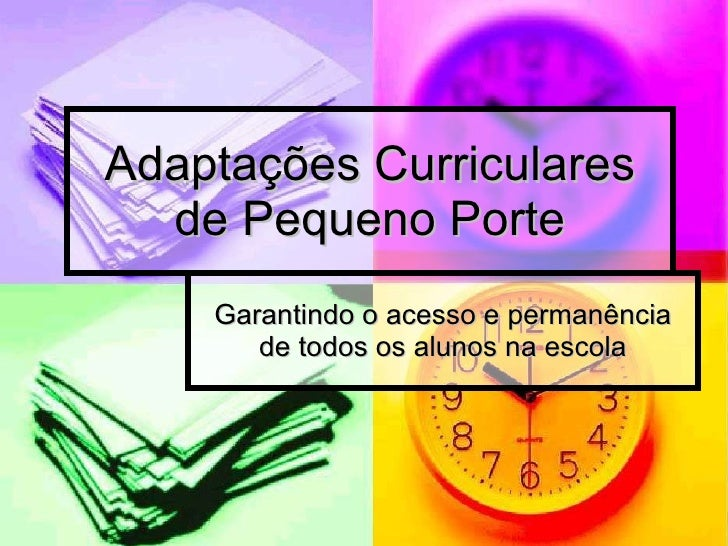 Adaptações Curriculares de Pequeno Porte Garantindo o acesso e permanência de todos os alunos na escola