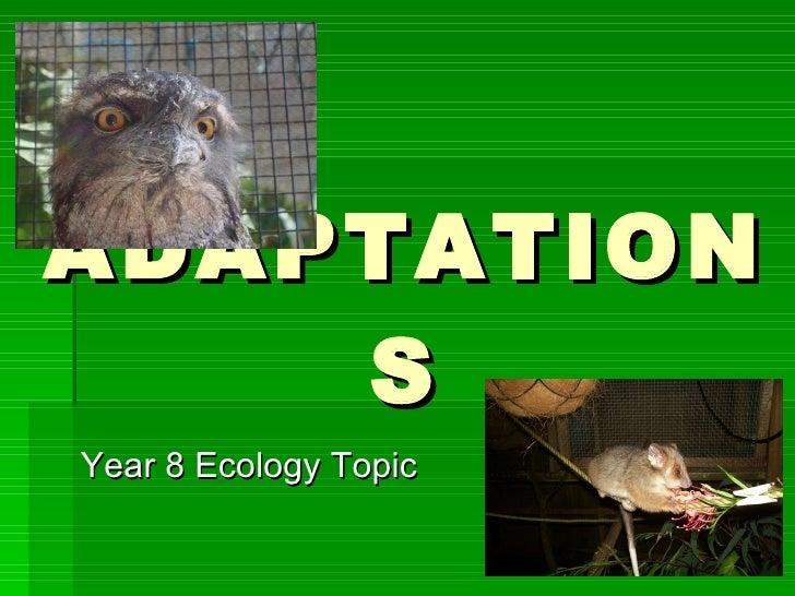 ADAPTATIONS <ul><li>Year 8 Ecology Topic </li></ul>