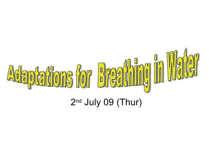 2 nd  July 09 (Thur) Adaptations for  Breathing in Water