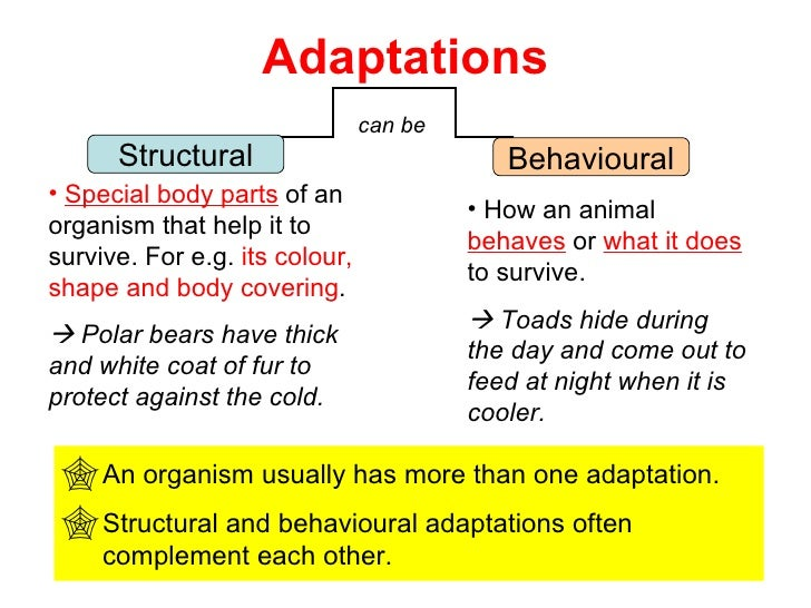 Adaptations For Survival 29 Jun