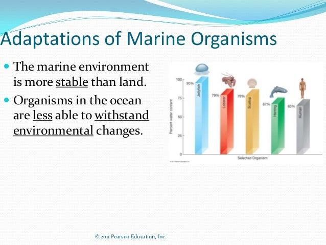 © 2011 Pearson Education, Inc.Adaptations of Marine Organisms The marine environmentis more stable than land. Organisms ...